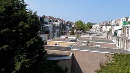 Groene daken - zo is het nu